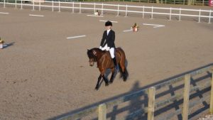 Shilstone Rocks Snow Flurry and Alice Wiseman Restricted Novice dressage Champion March 2014