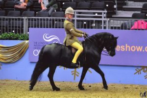 Furious owned by Joyce and Jacky Newbery ridden by Sam Roberts, took the Tagg Award for most points in HOYS show qualifiers 2012